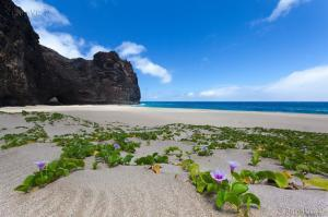 Kauai Destination Photography by PanaViz