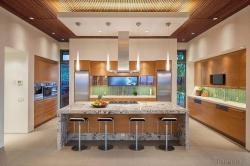 "An elegant contemporary kitchen. Winner of HGTV Ultimate House Hunt, ""Bringing the Outside In"" Category -2016. Photography by @panaviz"