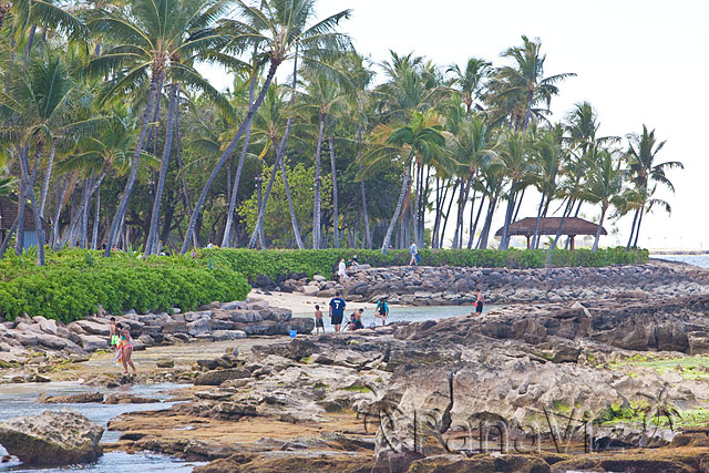 et Beach at KoOlina