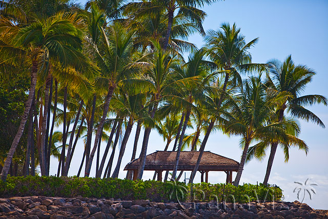 KoOlina Resort