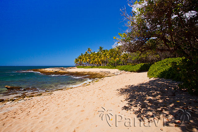 Hawaii Natural Beach