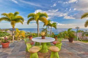 Hawaii Loa Ridge Ocean View Mountain View Luxury Real Estate